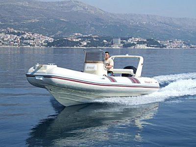 Barracuda 530
