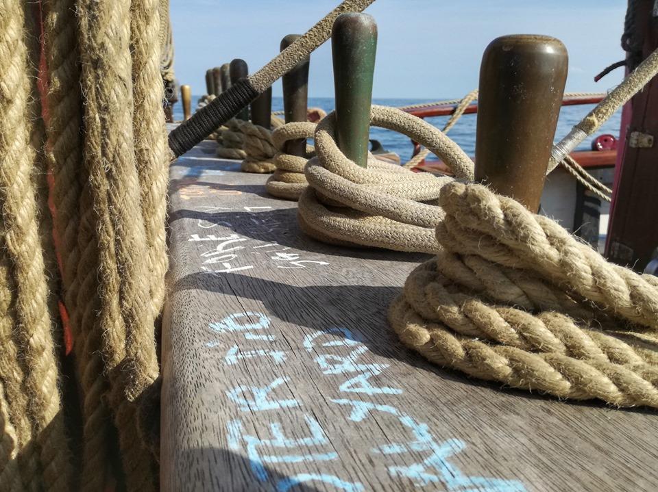 Participa en la Tall Ship Race – Travesía Formativa La Coruña – Dunkirk